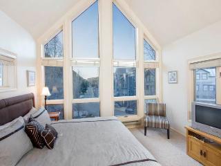 Viking Lodge #308 - Telluride vacation rentals