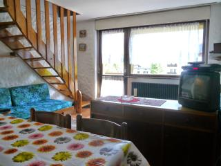 Appartamento San Martino di Castrozza - San Martino Di Castrozza vacation rentals