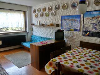 Appartamento San Martino di Castrozza - San Martino Di Castrozza vacation rentals
