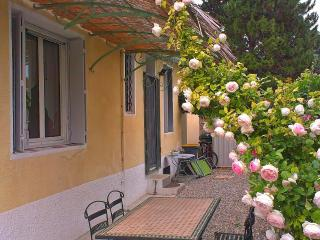 Country House nearby Mt.Ventoux/garden/pool - Carpentras vacation rentals