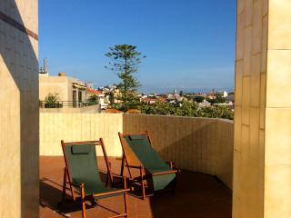 PENTHOUSE with a view over Oporto - Porto vacation rentals