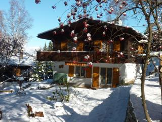 Nice Chalet with Deck and Towels Provided - Grächen vacation rentals
