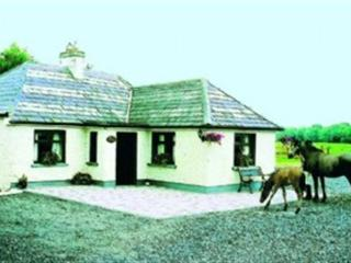 Lovely 3 bedroom Kiltale Cottage with Internet Access - Kiltale vacation rentals