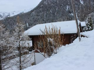 Charming 5 bedroom La Tzoumaz Chalet with Kettle - La Tzoumaz vacation rentals