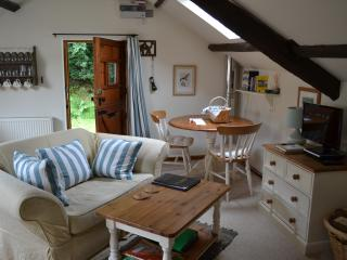 Cosy Rural Barn for Two (Red Kite Cottage) - Lampeter vacation rentals