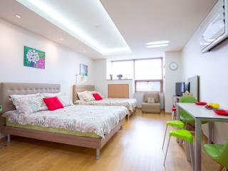 2 Queen beds/Insadong/Airport Bus/Subway - Geumsan-gun vacation rentals