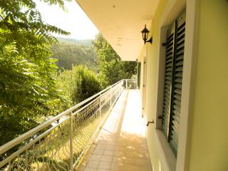 Edina E. - 101 - studio apartment for 2 persons - Icici vacation rentals