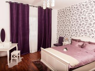 CITY CENTER - LUXURY APARTMENT - COMFY - FREE WiFi - Bucharest vacation rentals