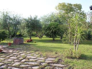 Bellissima villa immersa nel verde.Vista Mare-Etna - Santa Venerina vacation rentals