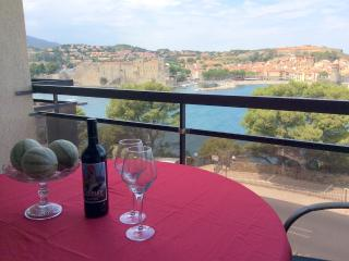 Comfortable Collioure Studio rental with Internet Access - Collioure vacation rentals