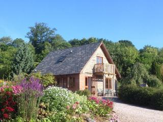 Heron Lodge - Clifton-upon-Teme vacation rentals