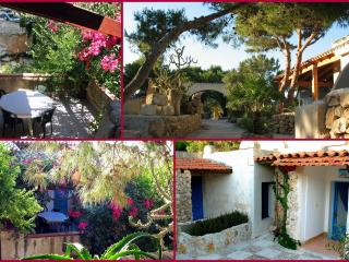 "Residence-Case Vacanza, appartamento ""BOUGANVILLE"" - Favignana vacation rentals"