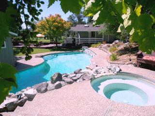 Fallen Tree Ranch - Sebastopol vacation rentals