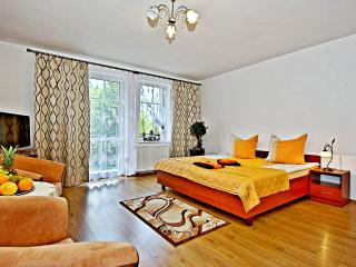 Adorable 36 bedroom House in Jelenia Gora with Internet Access - Jelenia Gora vacation rentals