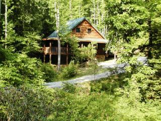 Private Cabin, on creek, in Tennessee Mountains - Tellico Plains vacation rentals