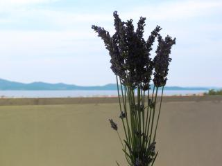 Flat with Superb sea view - Zadar vacation rentals