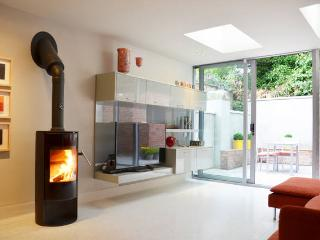 Dublin city center, beautiful House , very central - County Dublin vacation rentals