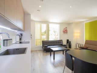 Kingfisher Cambridge Central ground floor with gym - Cambridge vacation rentals