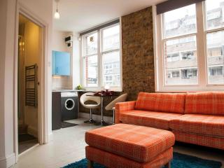 Central Apartment - a happy place - London vacation rentals