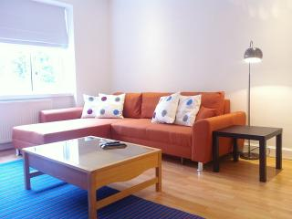 A Great Spacious London Apartment - London vacation rentals