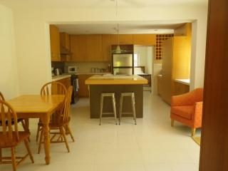 Executive Appartment walking distance to Hamilton - Devonshire vacation rentals