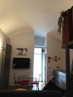 monolocale - Turin vacation rentals