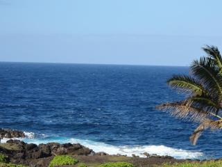 Hawaiian Hale - Pahoa vacation rentals
