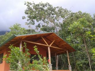 Casa Dulce...a sweet retreat in the primary forest - Ojochal vacation rentals