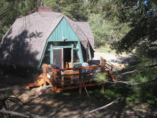 "Little Dome ""Location, location , location "" - Nathrop vacation rentals"
