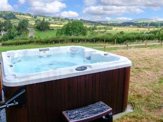 GLANYRAFON BUNGALOW, detached, all ground floor, hot tub, pool table, parking, garden, in St Harmon, Ref 29854 - St Harmon vacation rentals