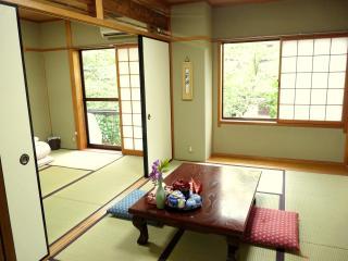 NEW OPEN! Sakura River Side APT - Kinki vacation rentals