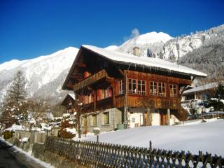 Two-room apartment in a chalet - Brienz vacation rentals