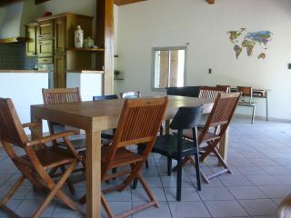 Large Family Home in Foix - Foix vacation rentals