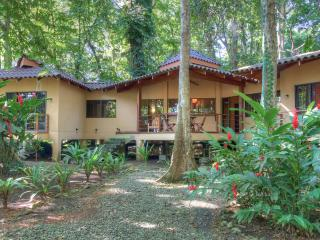 Casa Koda: Jungle & Beachfront - Limon vacation rentals