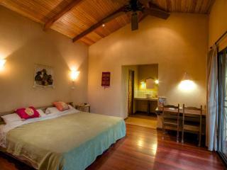 Casa Koda: Jungle & Beachfront - Cocles vacation rentals