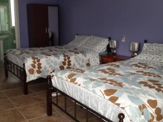 1 bedroom B&B with Internet Access in David - David vacation rentals