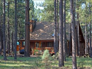 Nice 4 bedroom Pinetop Cabin with Deck - Pinetop vacation rentals