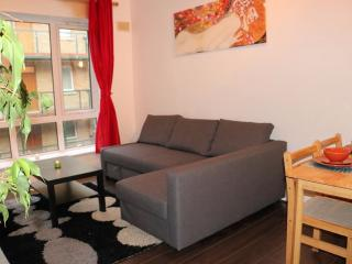 Comfortable 1 Bed Apartment Dublin City Center - Dublin vacation rentals