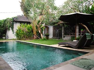 Villa Heliconia - New 3br Villa w/ Private Pool - Ubud vacation rentals