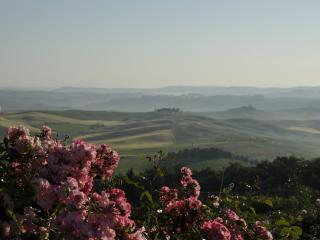 Beautiful Farmhouse Barn with Internet Access and Television - Montalcino vacation rentals