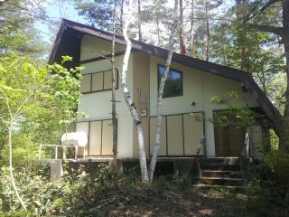 Cedar Ridge Cottage - If you want serious powder! - Kitaazumi-gun vacation rentals