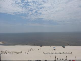 Wonderful Condo with Internet Access and A/C - Gulfport vacation rentals