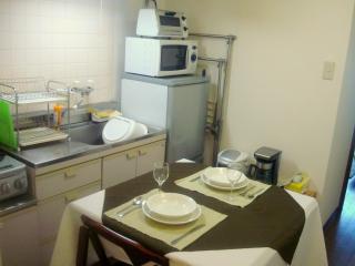 Quiet Tokyo Apartment 5 Min From Shinjuku - Tokyo Prefecture vacation rentals