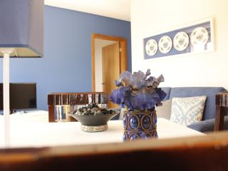 Nice Resort with Internet Access and A/C - Vale de Cambra vacation rentals
