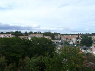 Self-catering apartment  200 m from the beach - Le Grau d'Agde vacation rentals