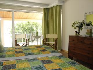 Casa da Nininha - T1 Duplex Verde - Vale de Cambra vacation rentals