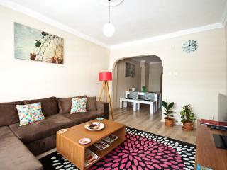 ENJOY YOUR HOLIDAY IN MY BIG PLACE IN CITY CENTER - Istanbul vacation rentals