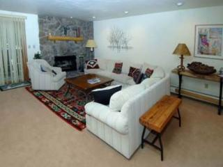 Beautiful 3 bedroom Apartment in Vail - Vail vacation rentals