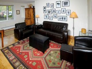 Vail Trails Chalet #7A - Vail vacation rentals