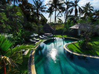 Private eight bedroom villa with pool, Canggu - Pererenan vacation rentals